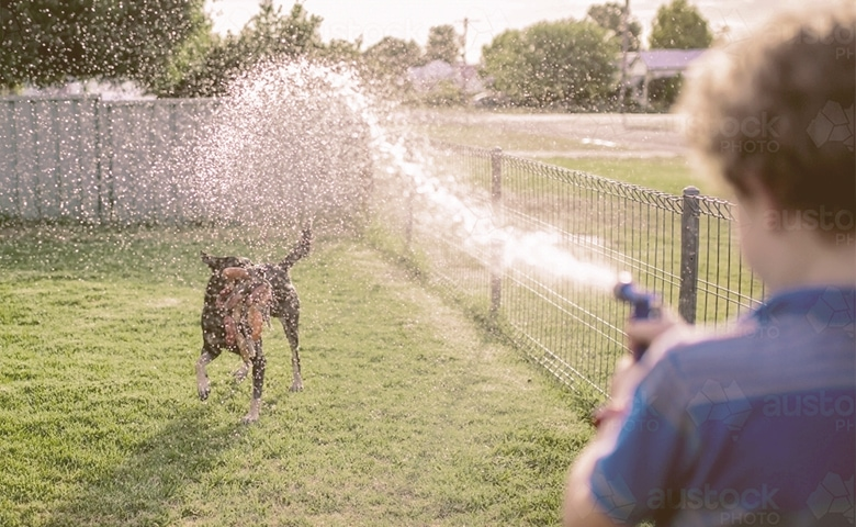 boy sprinkle dog with water