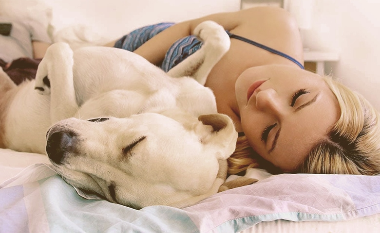 dog sleeps in bed with women