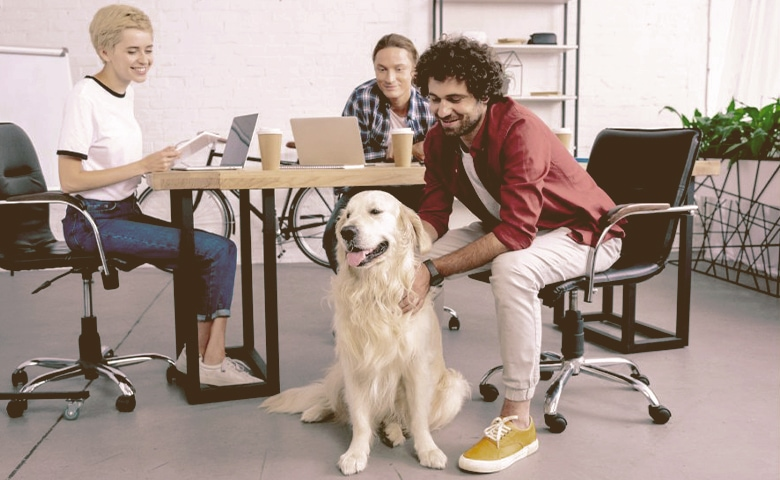 Dog with owner at work