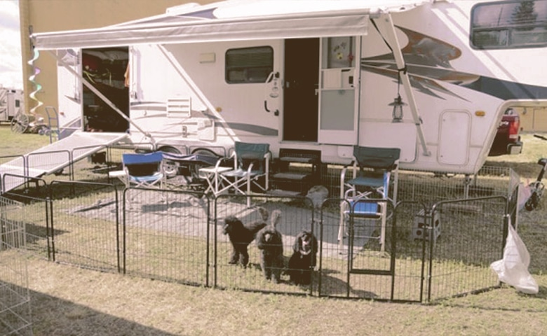 dog fence for rv