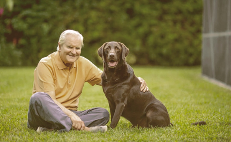 old dog sitting on the grass with owner