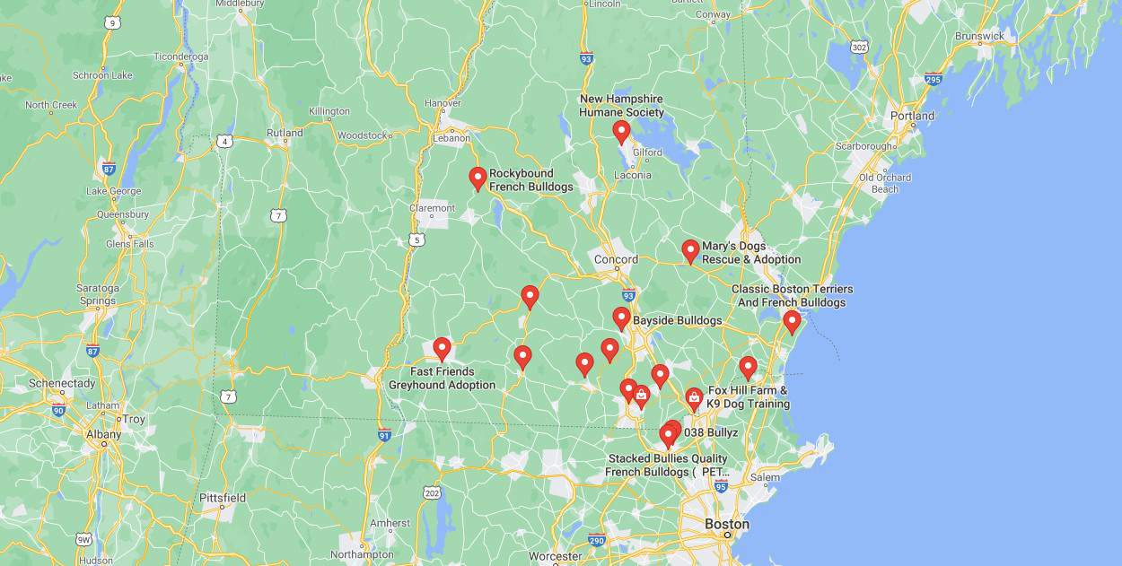 Map of French Bulldog Rescues NH